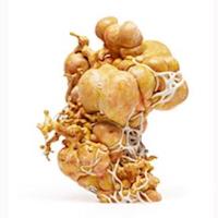 Image of 3d printing sculpture by Nick Ervinck